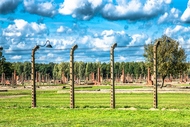 Auschwitz II-Birkenau: Many of the 174 barracks with only the brick chimneys to show that they existed. Poland.285-Edit