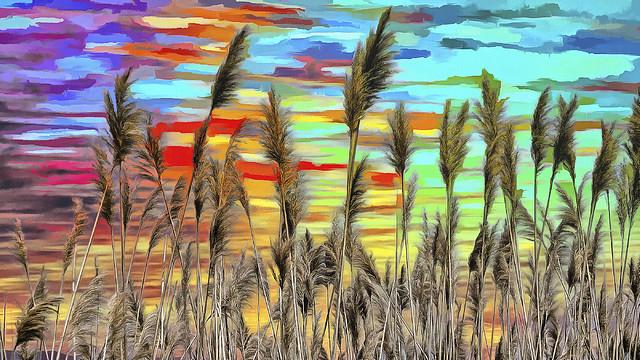 Reeds Up High