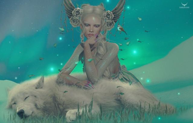Yeri~Polar Dreams -crop