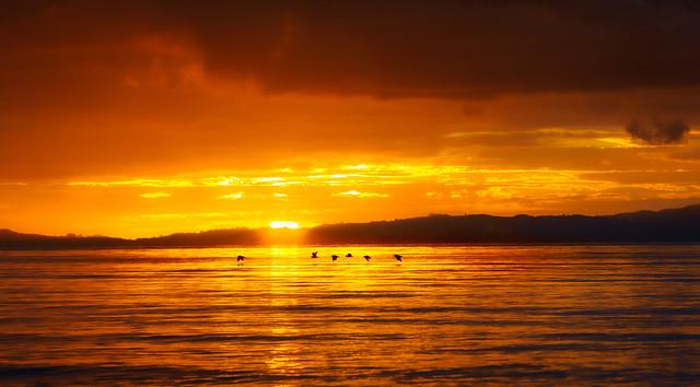 On Golden Gulf