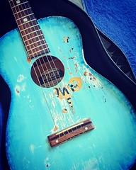 guitar family member