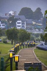 Gregory Park