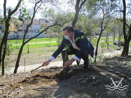2021_03_22 - Quinta das Freiras - Plantação de 120 árvores (37)