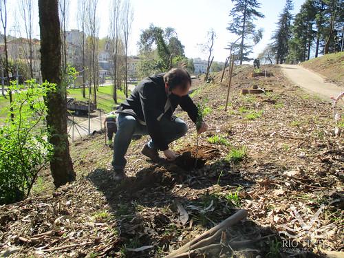 2021_03_22 - Quinta das Freiras - Plantação de 120 árvores (29)