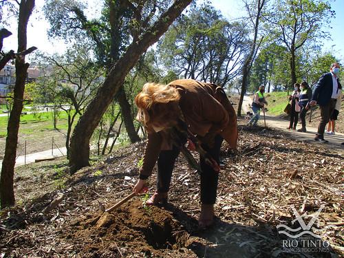 2021_03_22 - Quinta das Freiras - Plantação de 120 árvores (61)