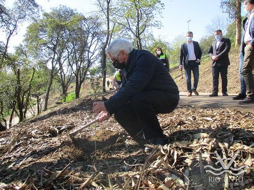 2021_03_22 - Quinta das Freiras - Plantação de 120 árvores (57)