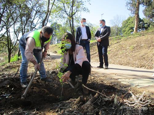 2021_03_22 - Quinta das Freiras - Plantação de 120 árvores (54)