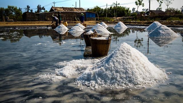 Salt Fields - Can Gio