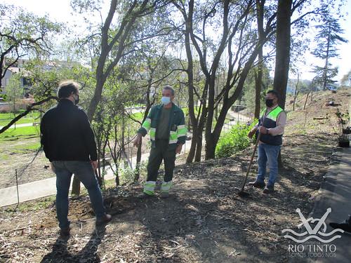 2021_03_22 - Quinta das Freiras - Plantação de 120 árvores (73)