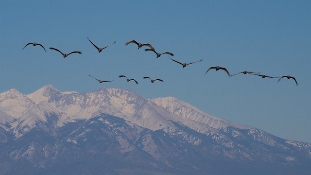 Flying Over Mt Blanca