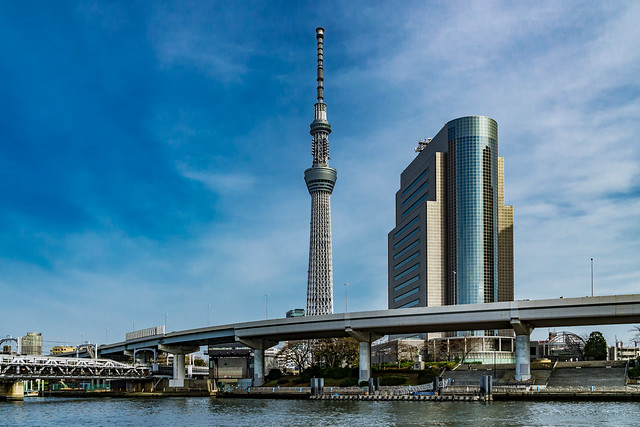 TOKYO SKYTREE: and Sumida Ward Office : 東京スカイツリーと墨田区役所庁舎