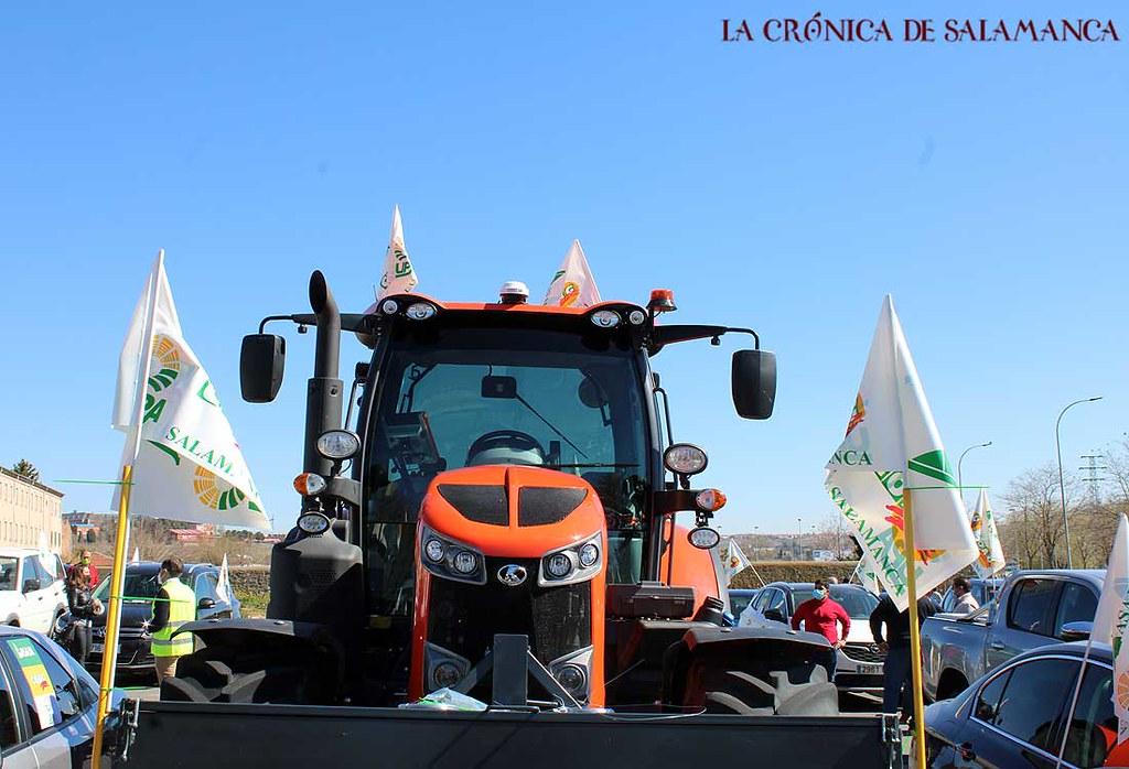 Protesta_Lobo_Salamanca-(47)