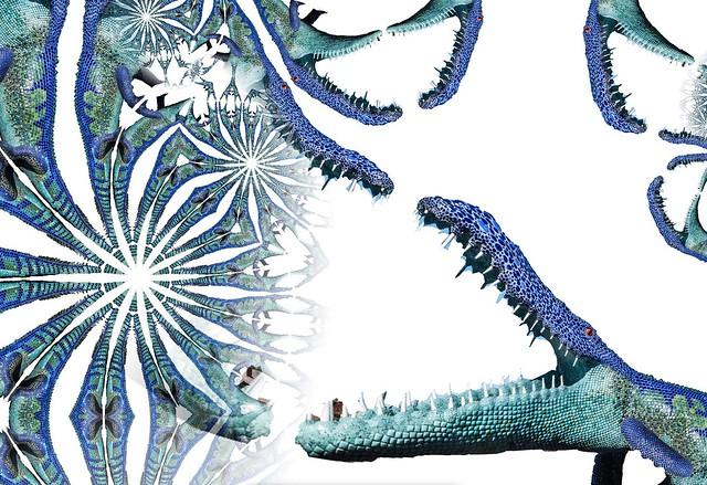 gator chop spiral kaleidoscope
