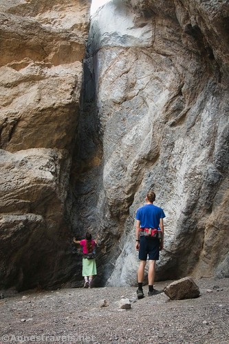 In the final grotto of Grotto Canyon, Death Valley National Park, California