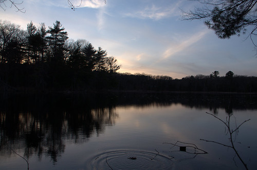 bakermeadow ripple sunset cloud sky skyscape color light pinecone pond lake andover massachusetts cloudy water reflection tree grass winter landscape frozen cold park
