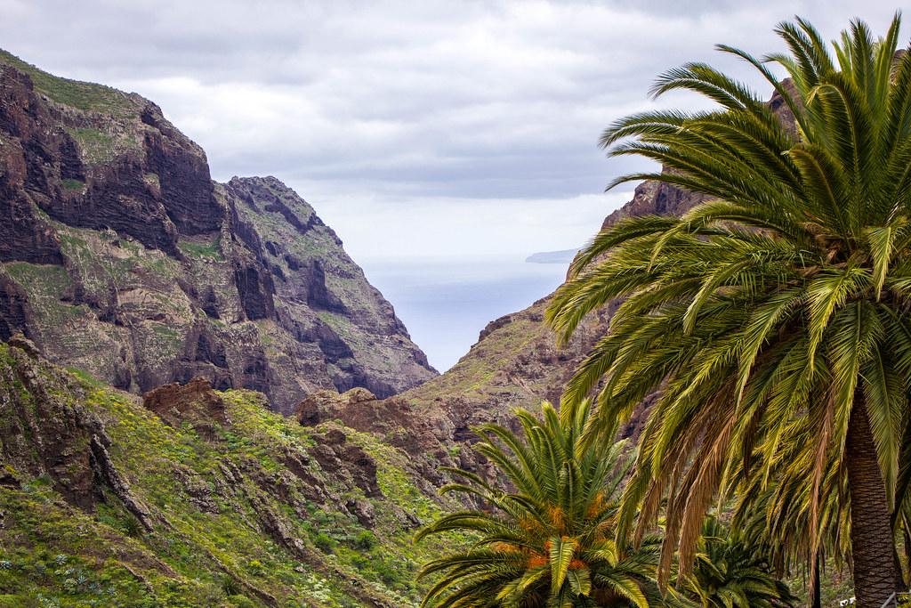 Barranco de Tenerife