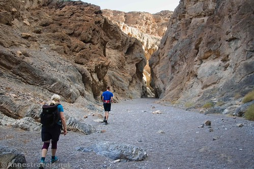 Walking the short wide section before the final narrows in Grotto Canyon, Death Valley National Park, California