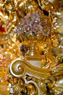 Dorado Trono 15