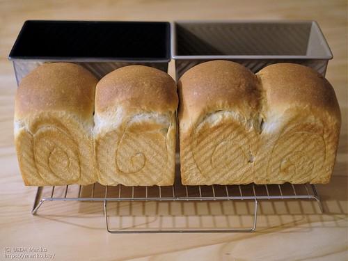 りんごパン 20210319-DSCT5512 (2)