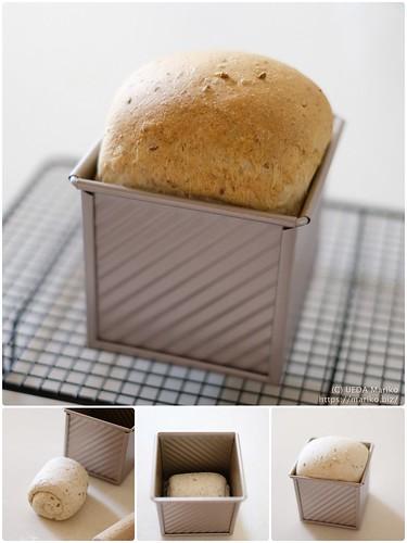 りんご酵母の雑穀パン 20210325-page5