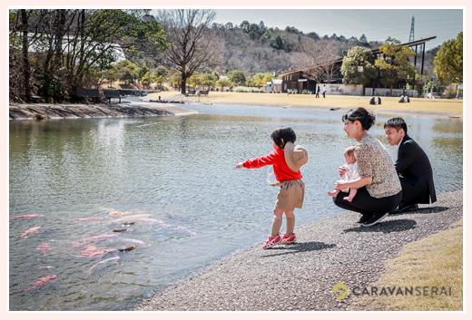 トヨタフォレスタヒルズの池には鯉が泳ぐ 愛知県豊田市