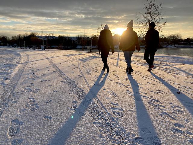 snowy morning walks