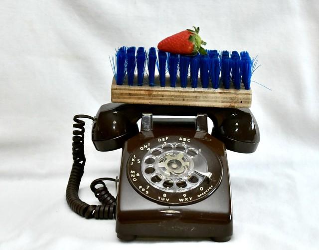 A Strawberry, a Scrub Brush and a Telephone