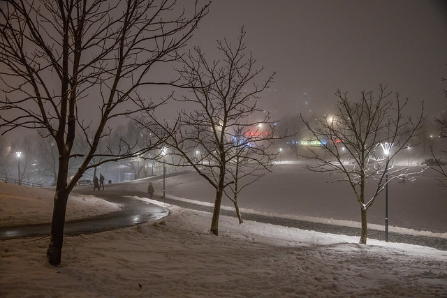 In the fog: distant light. Moscow, Russia, Dec.2020 (0U4A3640)