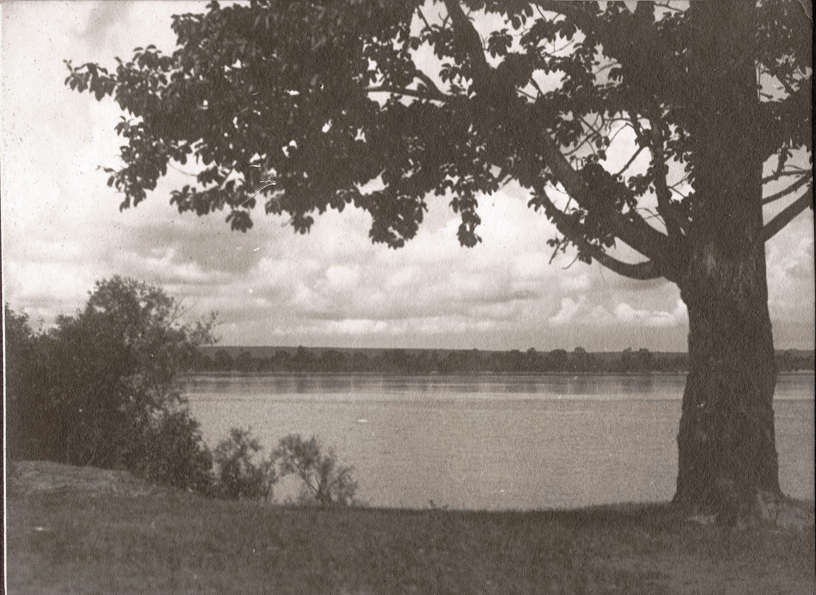 Вид реки Зеи у деревни Андреевки.