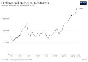 Türkiye'de Yıllara Göre Ayçiçek Çekirdeği Üretimi