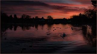 Sunset at the Heath