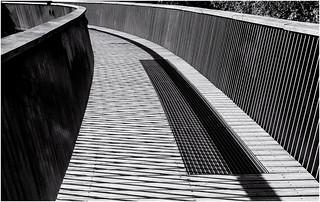 Bridge at Westonbirt