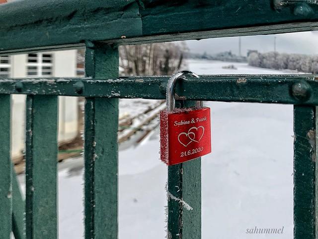 Love-Fence  - Happy fence Friday