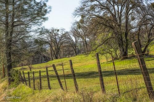 california spring abandoned pleasantvalleyroad sierranevadafoothills lightroom6 landscape topazstudio canon5dmarkiii canonef24105mmf4lisusm nevadacounty abandonedbarn