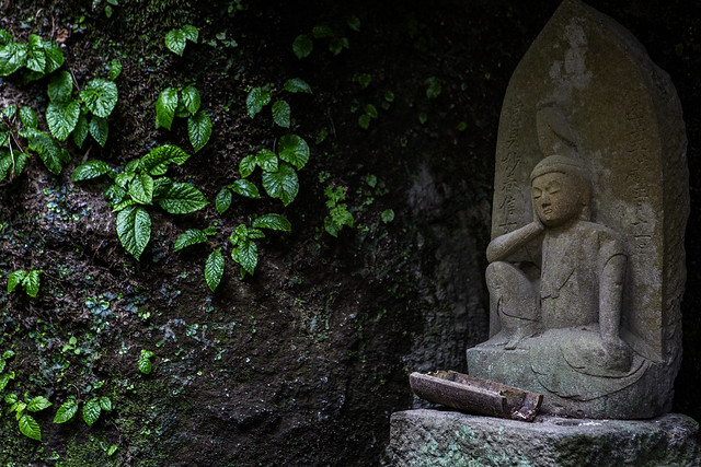 Tranquility At Buddhist Temple In Kamakura