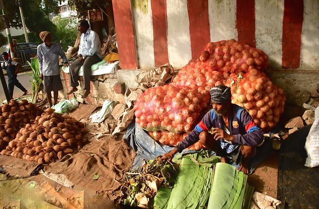 India- Karnataka- Mysore (Explore)