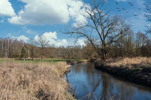 Et au milieu coule une rivière - A River Runs Through It