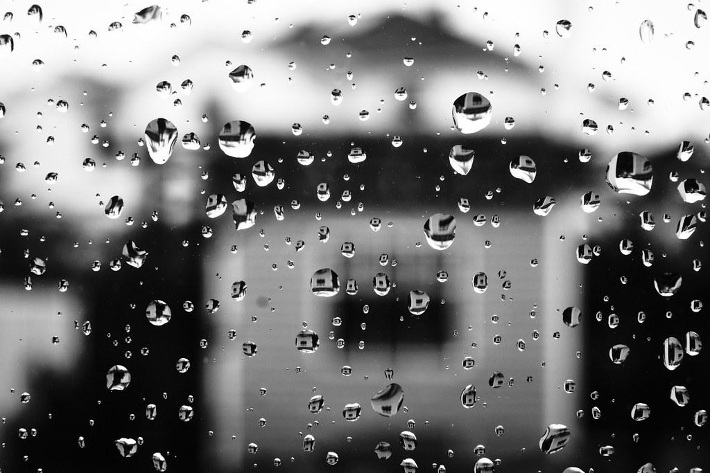 85/365 : Rain, rain, go away