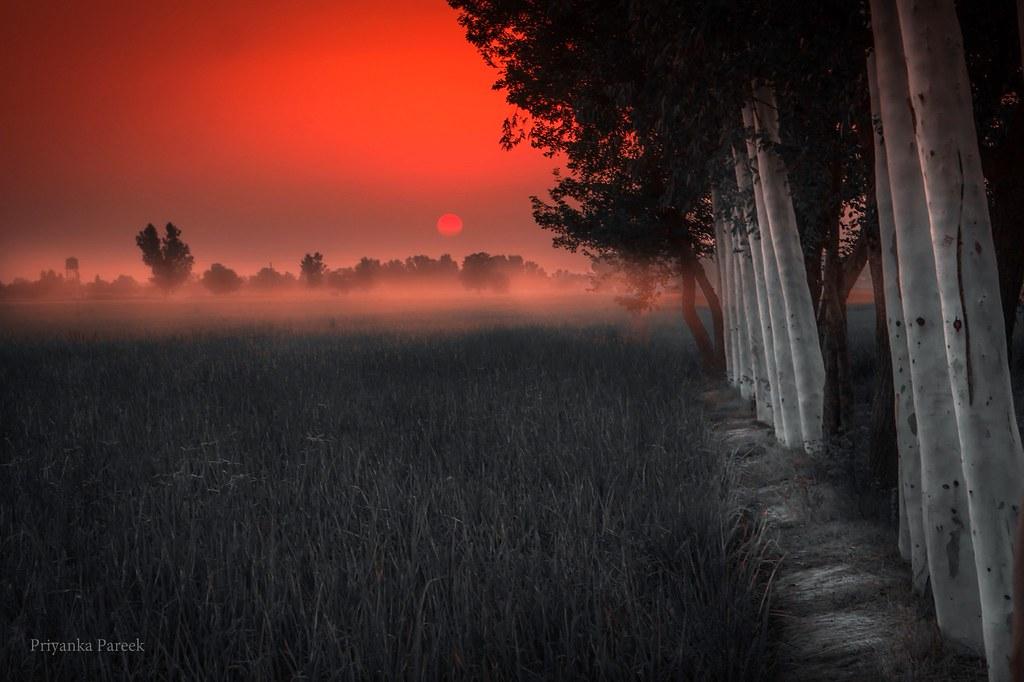 first light...