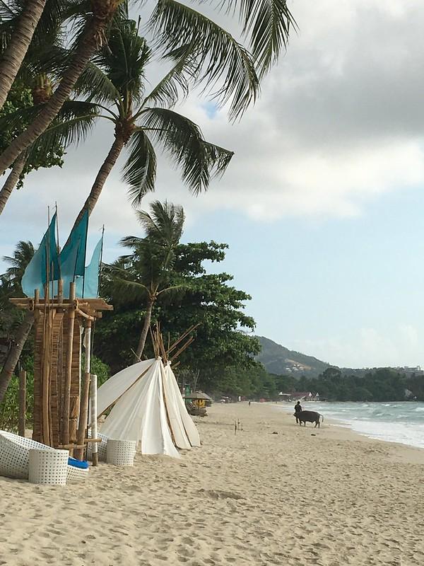 チャウエンビーチ chaweng beach koh samui