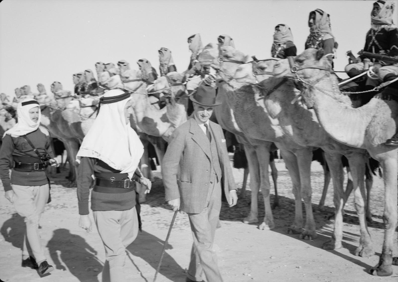 05. Его Превосходительство инспектирует верблюжий корпус