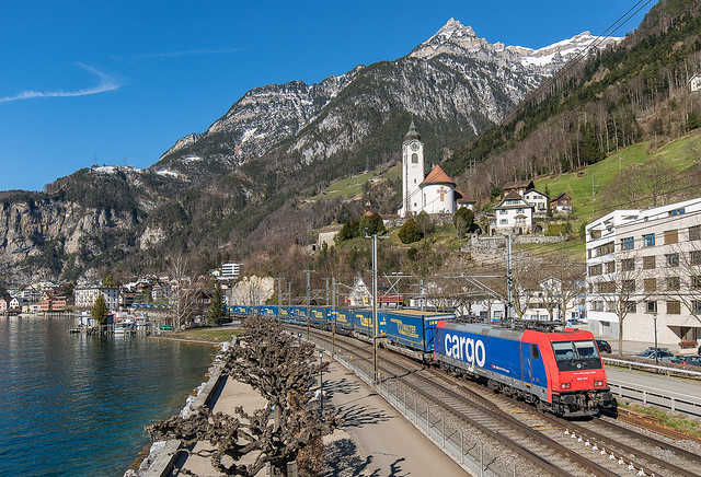 SBB Re 484 004 with LKW-Walter Trailer
