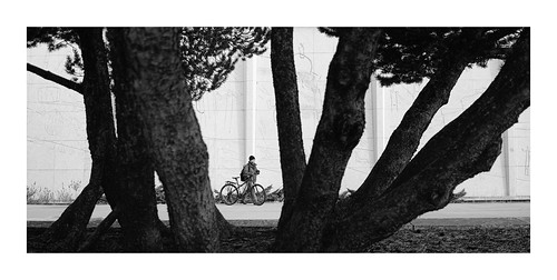 fujifilm house government x100v museum alberta royal abandoned canada fujilove camera lens mood classic kodak vanveenjf tree bw black forest rangefinder shadow bike fietser pedestrian alone walking wall