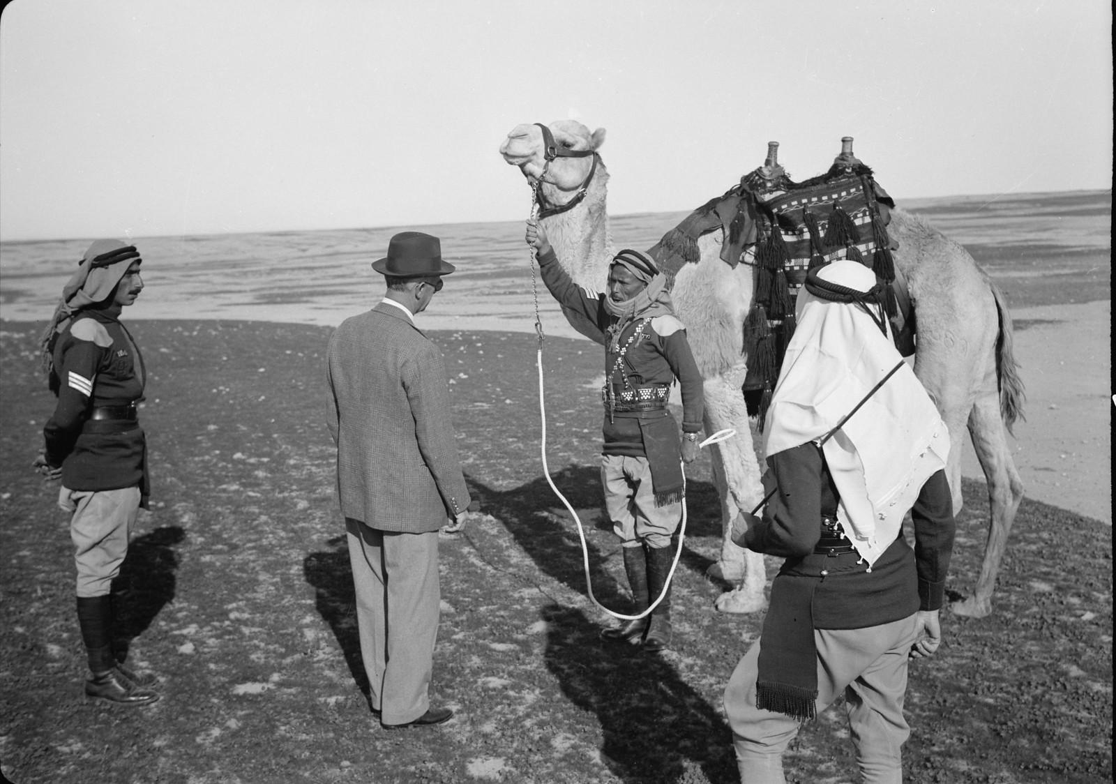 08. Его Превосходительство разговаривает с членами верблюжьего корпуса.