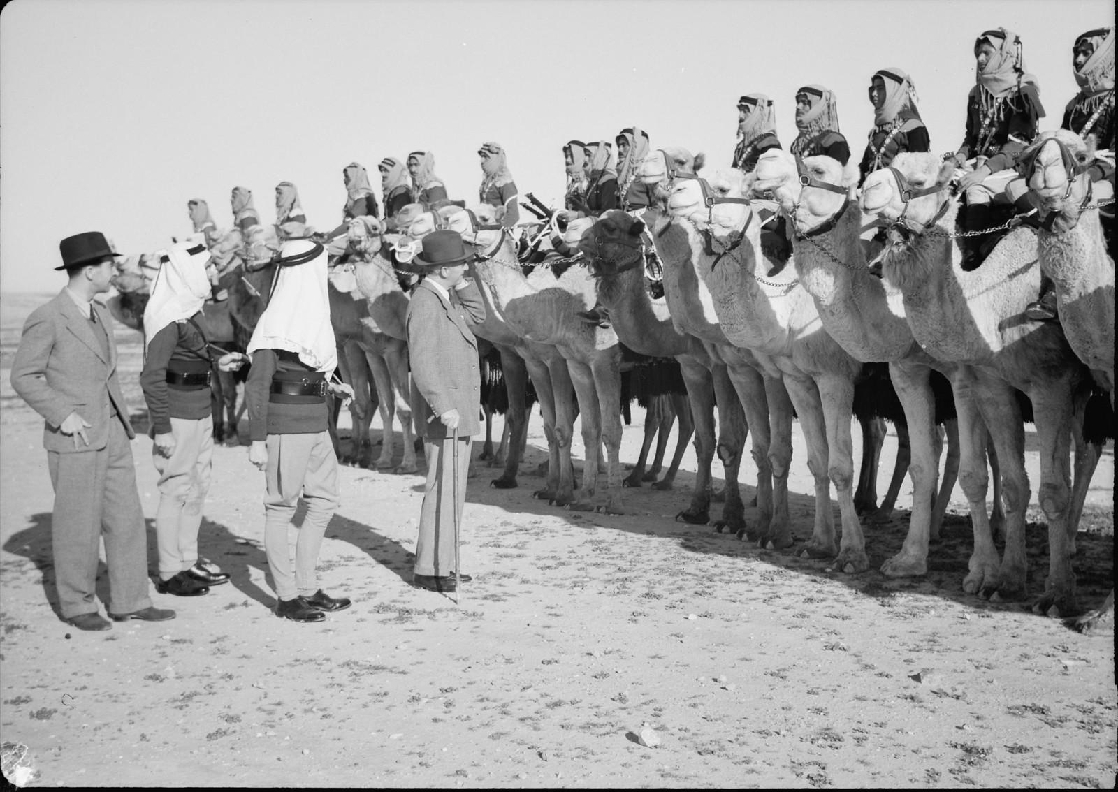 06. Его Превосходительство инспектирует верблюжий корпус