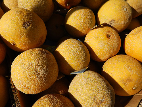 yellow melons at Roskilde, Denmark