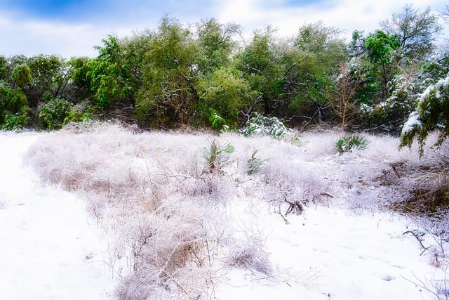SnowStorm_003-Edit (In Explore)
