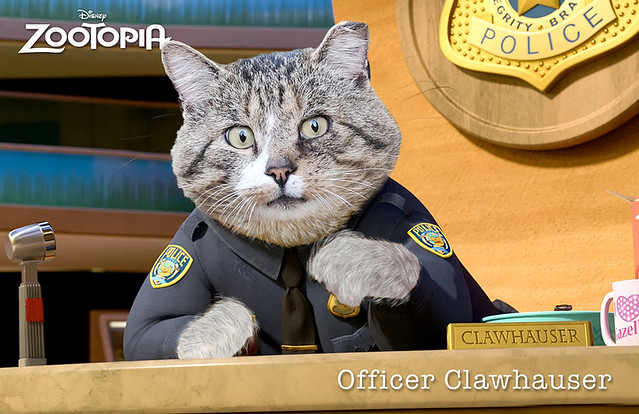 Dwight-Clawhauser