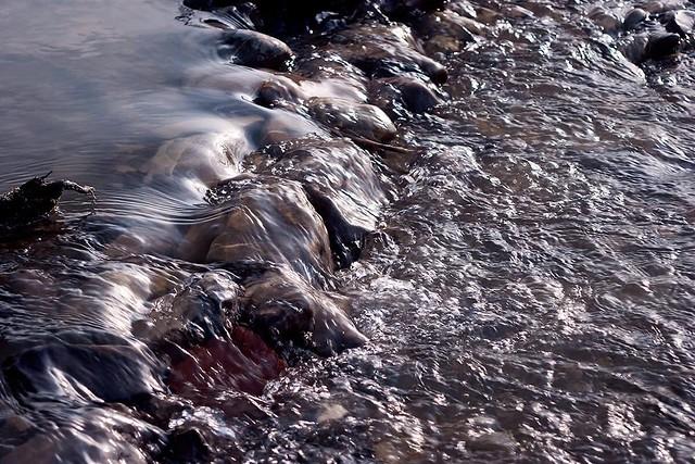 Flowing water - Torrente Scrivia, Castelnuovo Scrivia (AL)