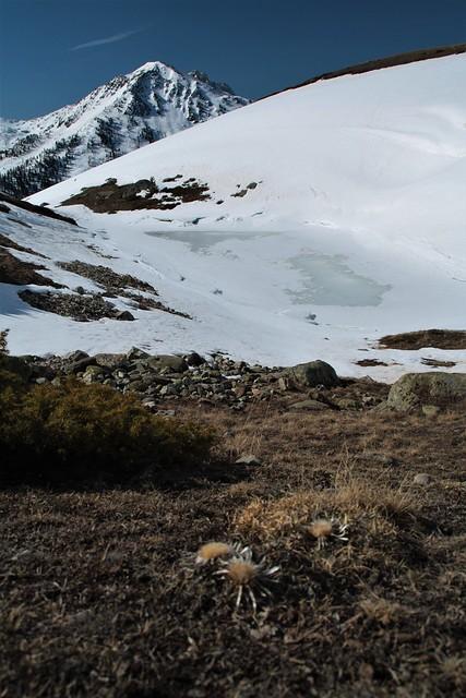 Lac de la Quête, alpage de Biaune